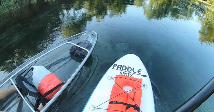 PaddleSMTX1 -small